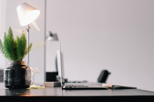 A workspace with desk, laptop, and green fern.